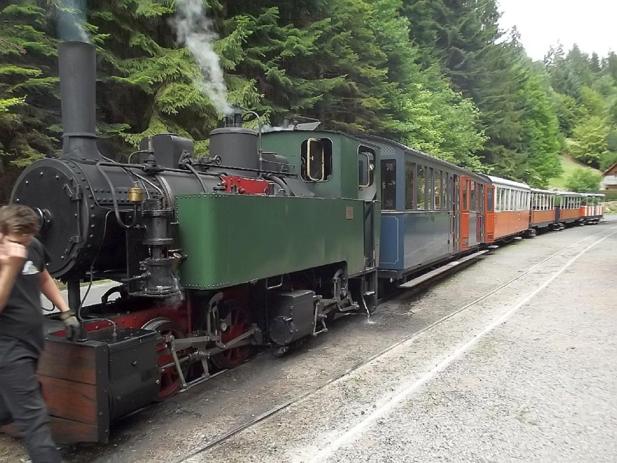 Mit der Waldeisenbahn fuhren wir dann in Abreschviller zum Sägewerk ' GRAND-SOLDAT'