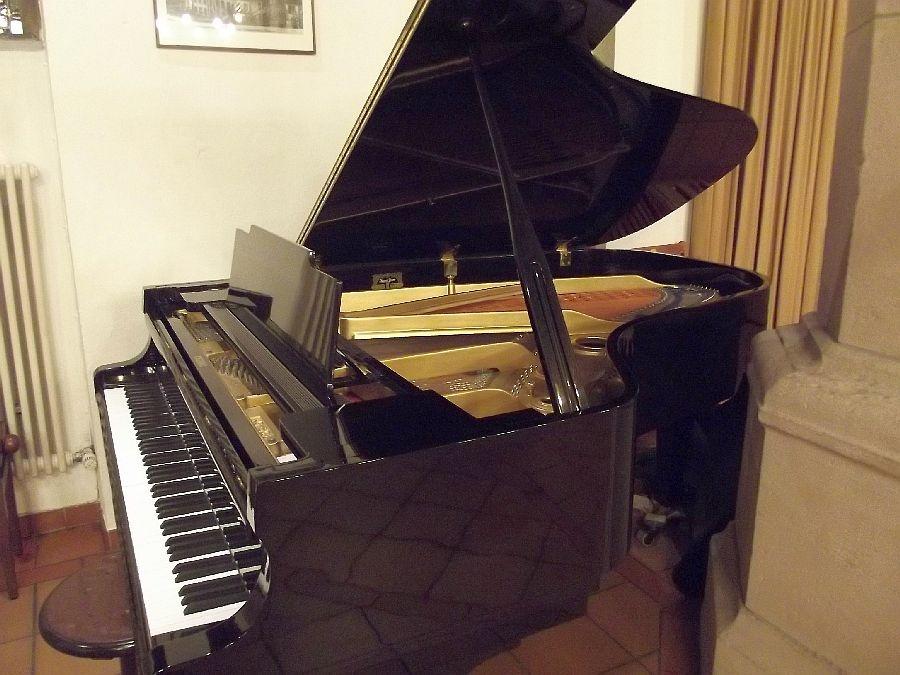 Klavierbegleitung am Flügel durch Uwe Ziermann